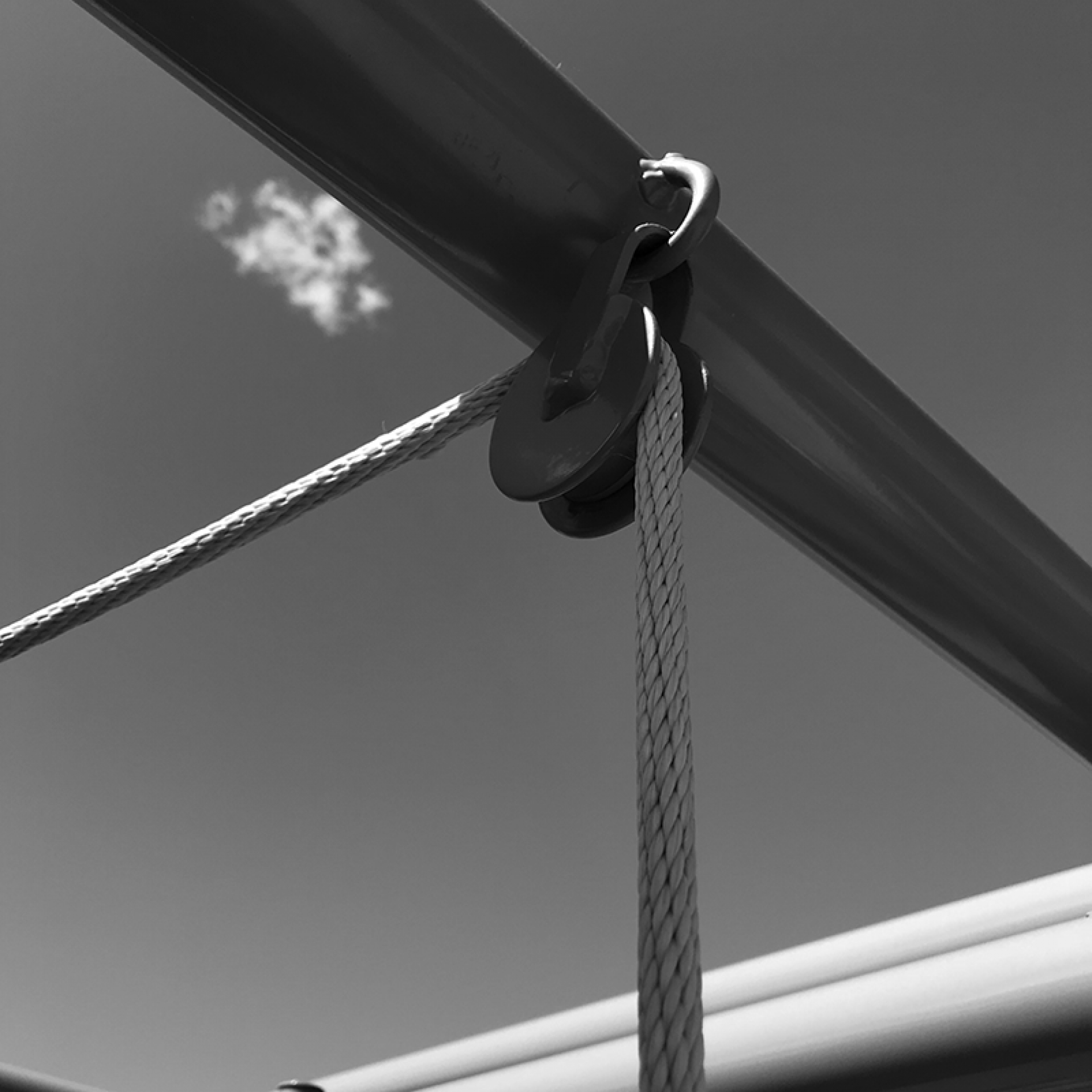 Image of cables on a cattle chute