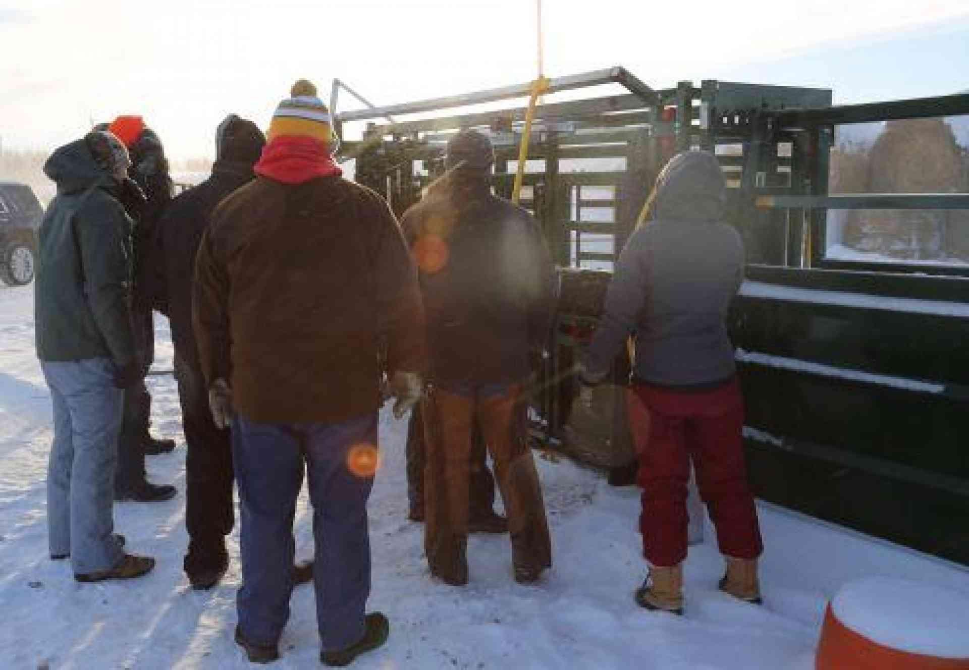Winter Livestock Care