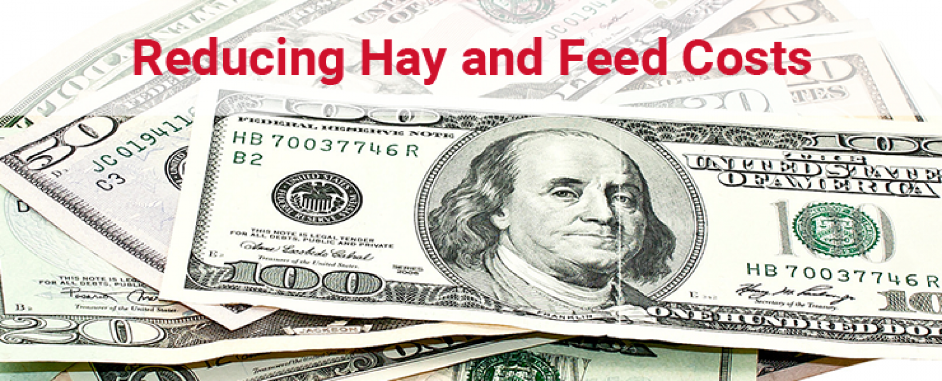 Reducing Hay and Feed Costs