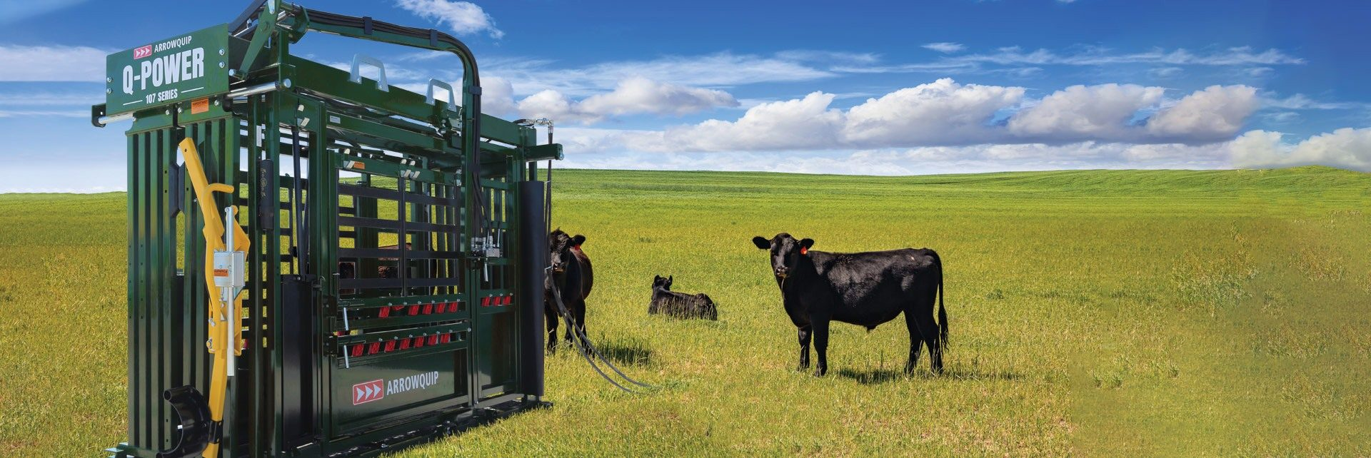 The Q-Power 107 Series hydraulic cattle chute in a field with cattle