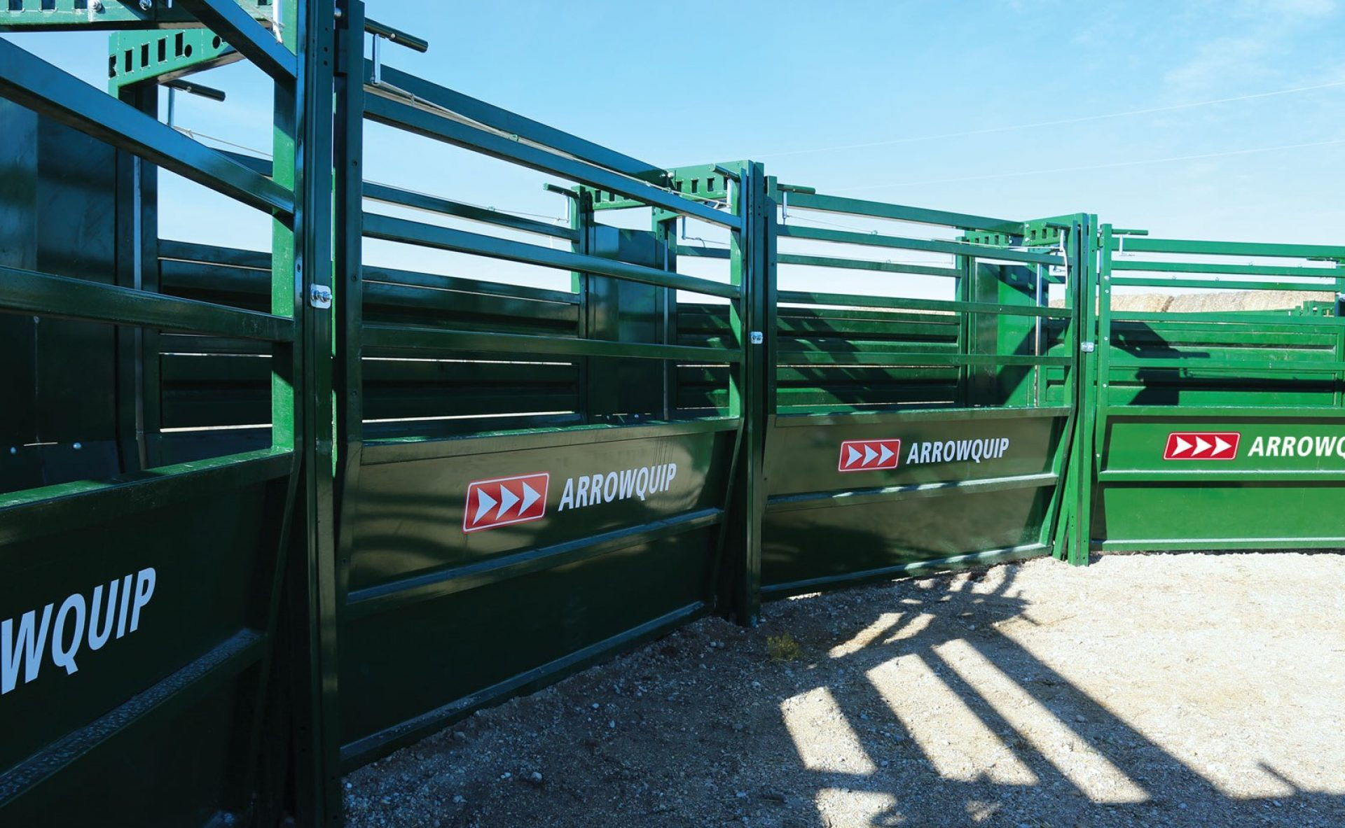 Easy Flow Adjustable Cattle Alleys with kicker panels to form curved alley