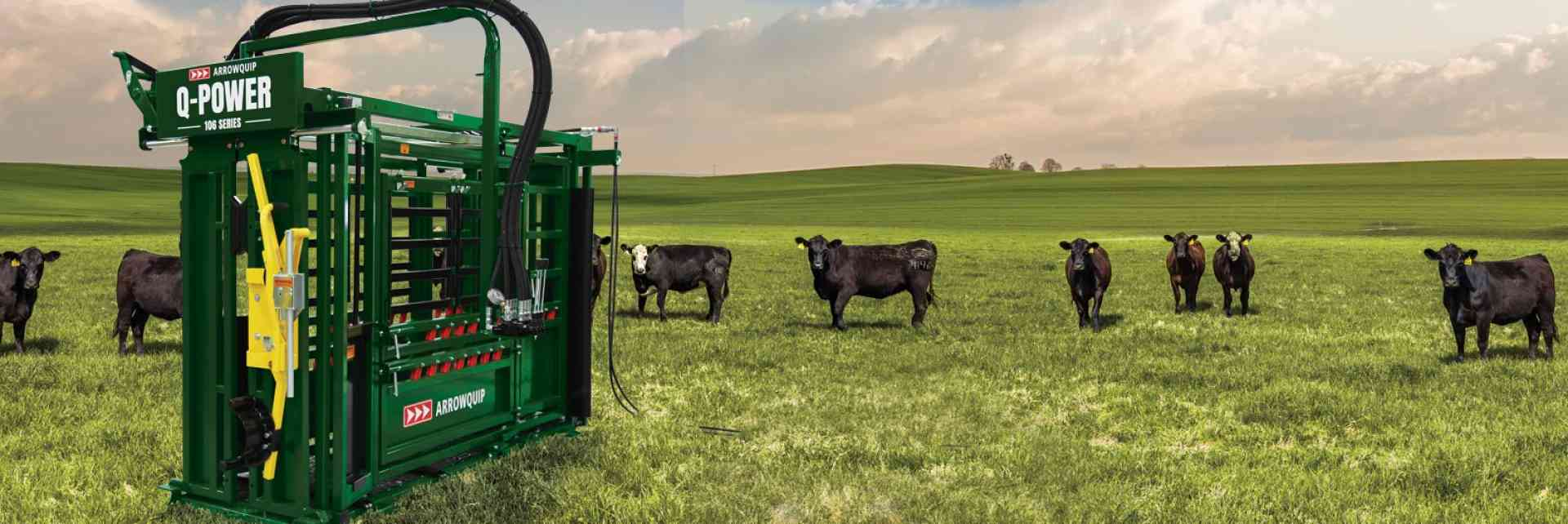 Hydraulic Cattle Chute | Q-Power 106 Series Cattle Chute | Arrowquip Cattle Equipment