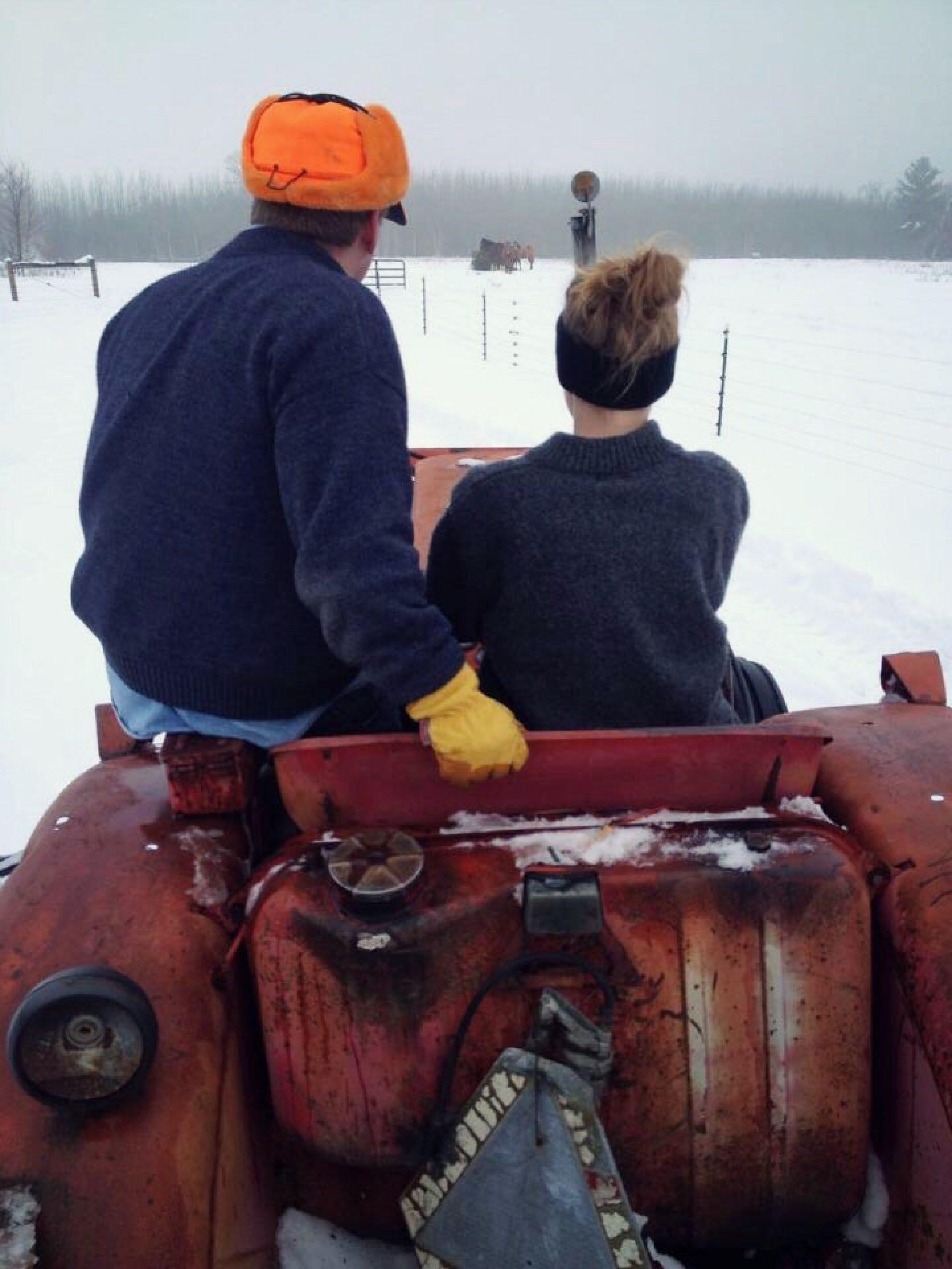 Molly Tractor Farm