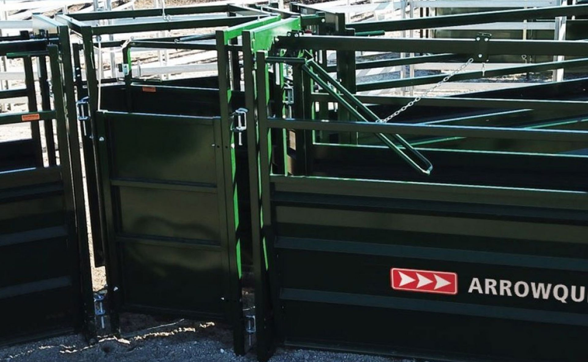 Cattle Sorting Alley for Working Systems