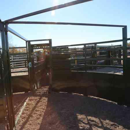 Vue du point de vue des bovins du système 3E dans un enclos pivotant