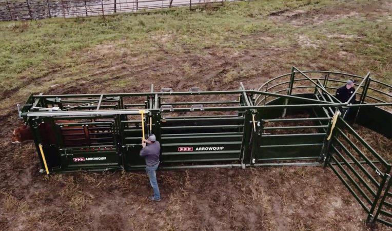 Portable cattle handling system fully set up