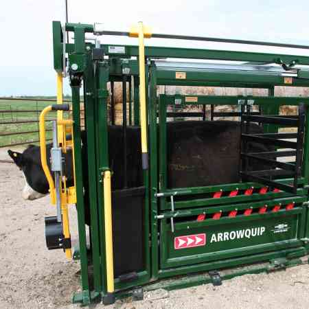 Side view of cow in Arrowquip Q-Catch 86 Series with side access door open