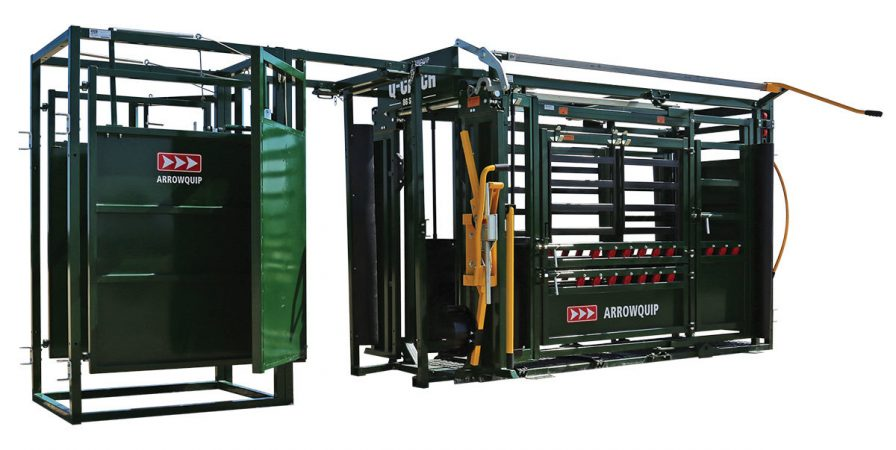 Cattle drafting and sorting gate with man doors open