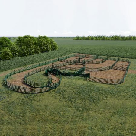 Large cattle handling system design in field