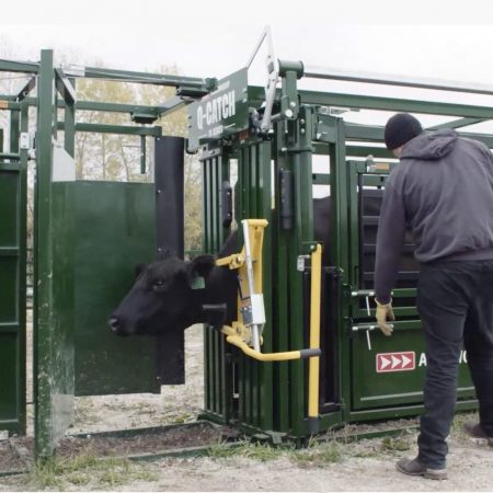 Cattle head restraint on 74 Series squeeze chute