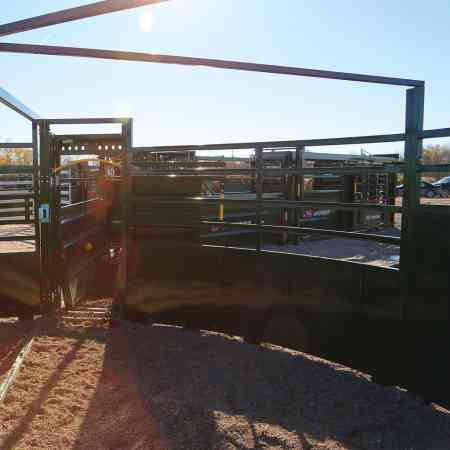 Cattle's View of 3E System in Forcing Pen