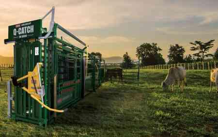 Portable Cattle Squeeze Chute | Portable Q-Catch 86 Series Cattle Chute, Cattle Alley & Cattle Tub | Arrowquip Cattle Equipment