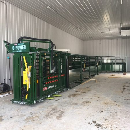 Arrow cattle working system with hydraulic cattle squeeze chute in building