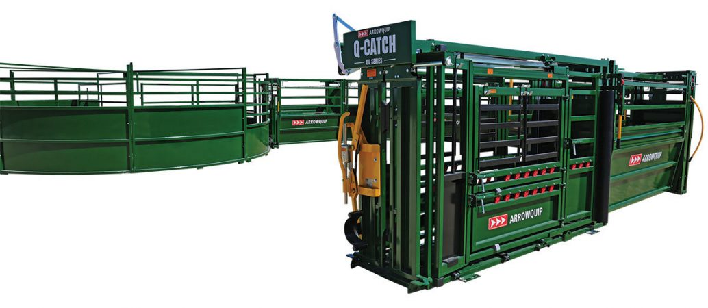 Extra-large cattle working system layout with manual squeeze chute