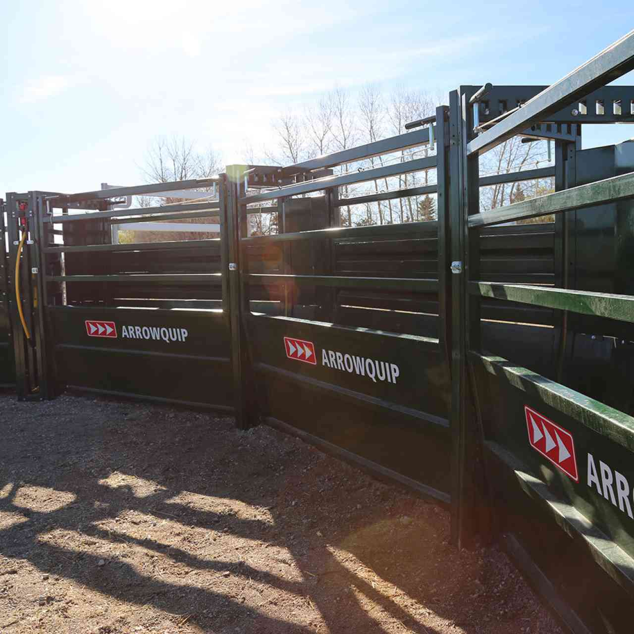 Adjustable panels on Easy Flow Curved Cattle Alley allow handlers to control what cattle see