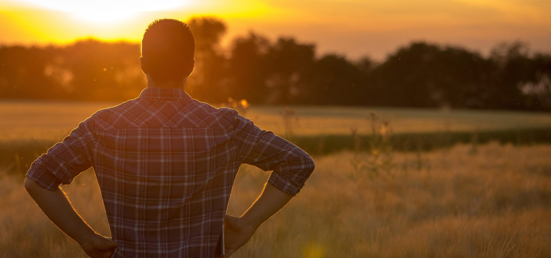 Cattle rancher looking out at pasture at sunset