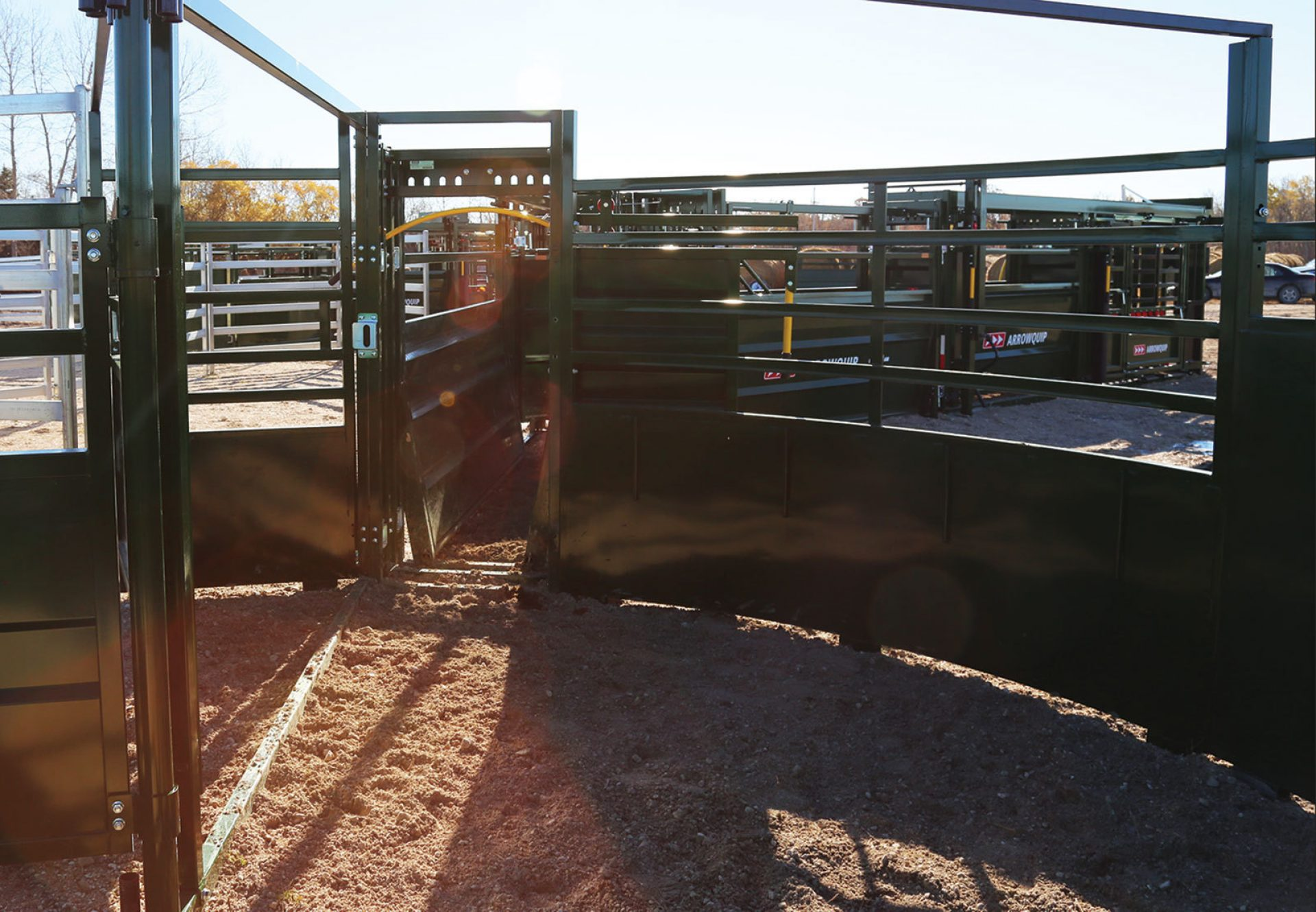 3E System in Cattle Crowding Tub uses light to guide cattle