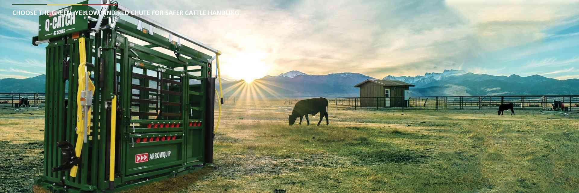 Arrowquip cattle chute in grass pasture with livestock