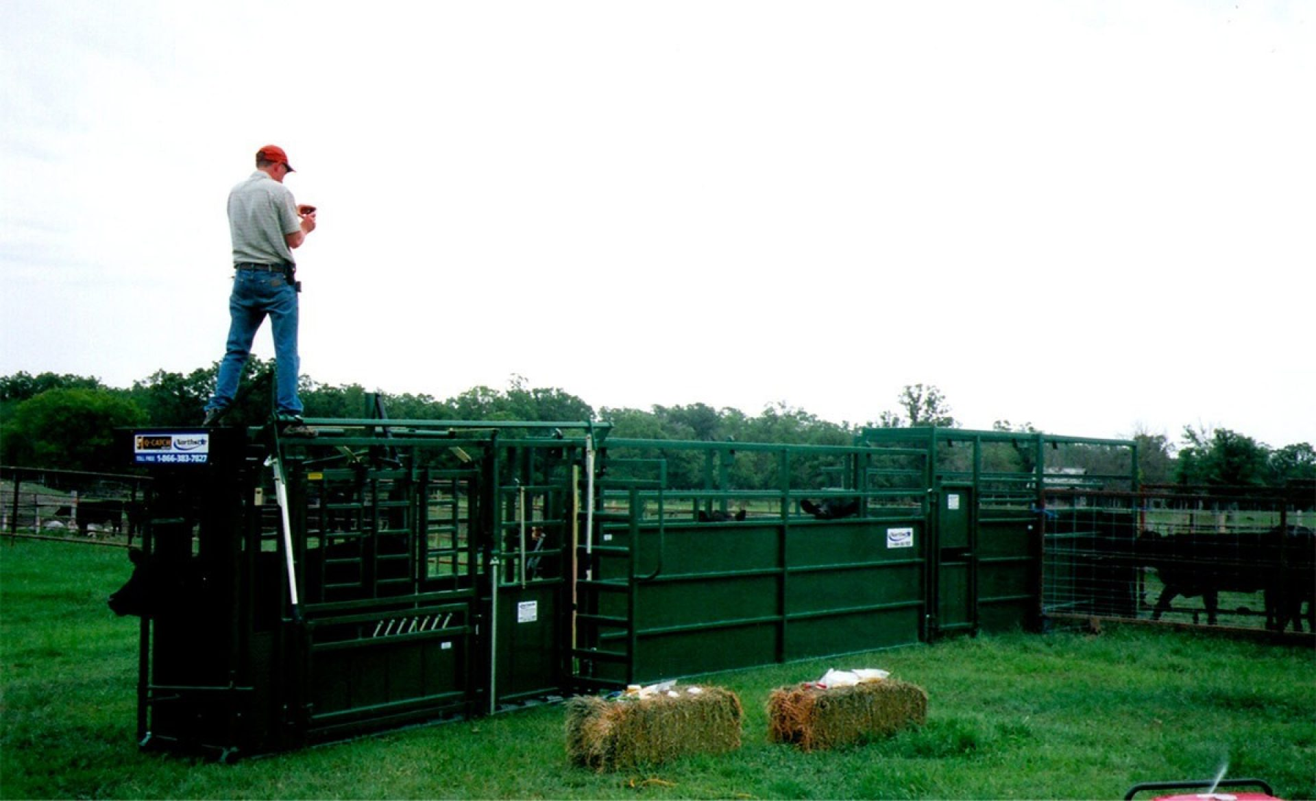 Man standing on top of old Arrowquip cattle chute