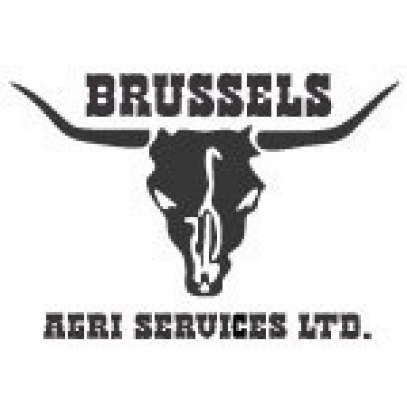Brussels Online Logo