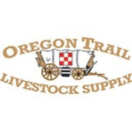 Oregon trail online