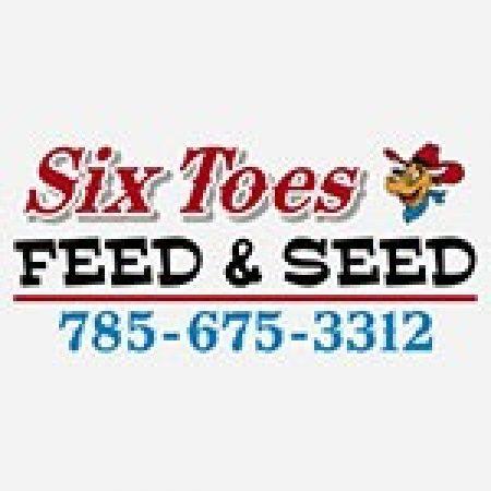 Six toes logo