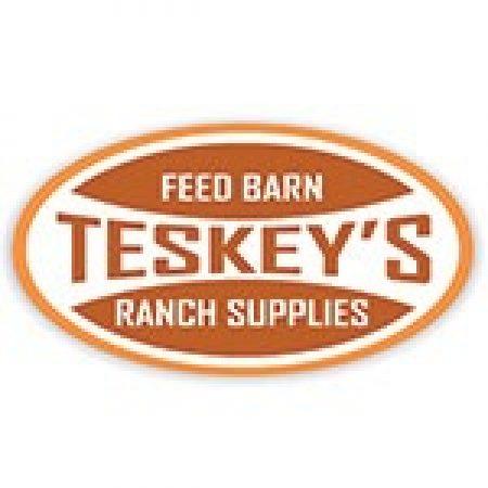 Teskeys online logo